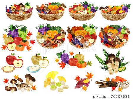 水彩 秋の野菜と果物 カゴ盛り 70237651
