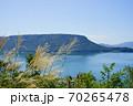 ススキ 瀬戸内海 遠方に屋島(香川県高松市) 70265478
