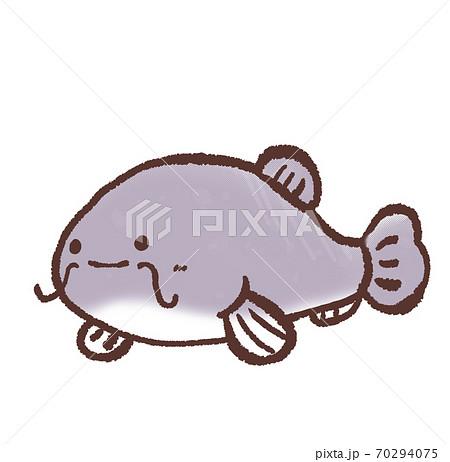 R:もっとメルヘンな水族館 ナマズB 70294075