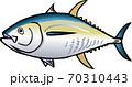 キハダ 70310443