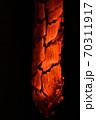 薪の目 70311917