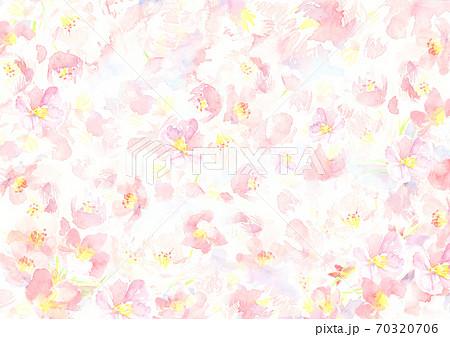 春 水彩で描いた桜の花の背景イラスト 70320706