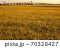 京都市南部の田園風景 70328427