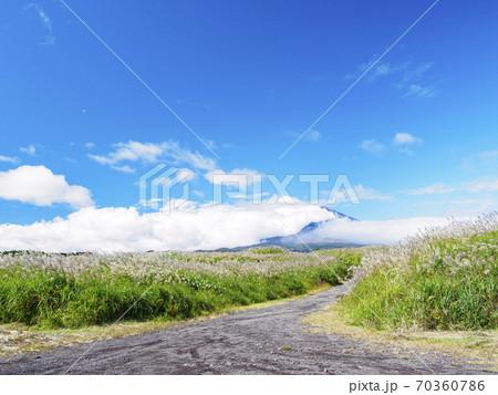 富士山とすすきの静岡県御殿場の秋 70360786