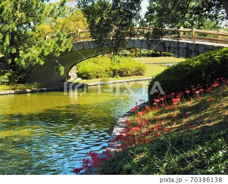 橋のある水辺に曼珠沙華の咲く風景 70386138