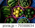 カラフル野菜 緑 70388634