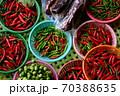 カラフル野菜 赤 70388635