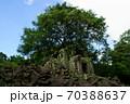 ラピュタのモチーフ・カンボジア・ベンメリア 70388637