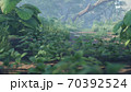 Beautiful jungle and green ferns in the rainforest. View of the green forest in the jungle on a sunny morning. 3D Rendering. 70392524