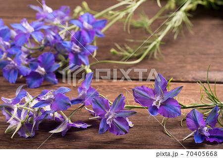 焦げ茶色のテーブルの上のデルフィニウムの花 70405668