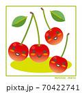 なちゅらるズ さくらんぼ果実で収穫のご案内 70422741