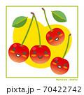なちゅらるズ さくらんぼ果実で収穫のご案内 70422742