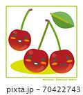 なちゅらるズ アメリカンチェリー果実で収穫のご案内 70422743