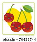 なちゅらるズ アメリカンチェリー果実で収穫のご案内 70422744