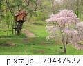 高原のツリーハウス 70437527
