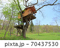 高原のツリーハウス 70437530