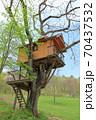 高原のツリーハウス 70437532