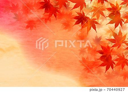 紅葉 もみじ 秋  背景 70440927