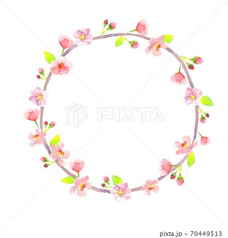 水彩で描いた桜の丸型フレーム 70449513