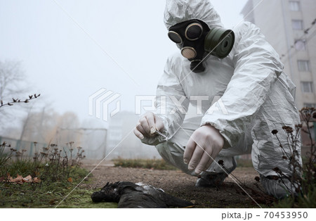 Scientist taking dead pigeon feather in test tube. 70453950