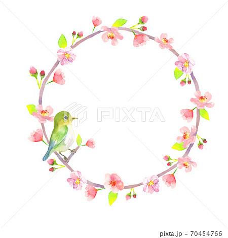水彩で描いた桜とうぐいすの丸型フレーム 70454766