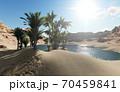 3d rendering - Oasis in the desert 70459841