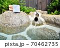 温泉イメージ 露天風呂イメージ 温泉 露天風呂 温泉旅館 日本の風景 日本文化  70462735