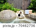 温泉イメージ 露天風呂イメージ 温泉 露天風呂 温泉旅館 日本の風景 日本文化  70462736