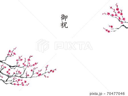 梅の墨彩画 熨斗 70477046