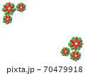 ポインセチア 70479918