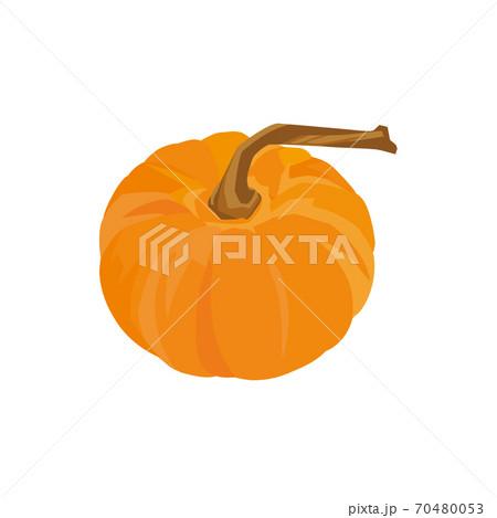 飾りかぼちゃ 70480053