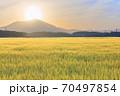 ダイヤモンド筑波山と金色の麦畑 朝景 70497854