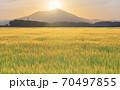 ダイヤモンド筑波山と金色の麦畑 朝景 70497855