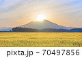 ダイヤモンド筑波山と金色の麦畑 朝景 70497856