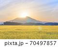 ダイヤモンド筑波山と金色の麦畑 朝景 70497857