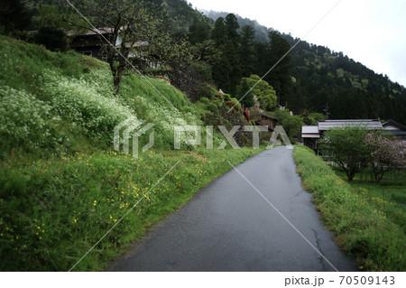 京都府美山町 雨の田舎道 70509143