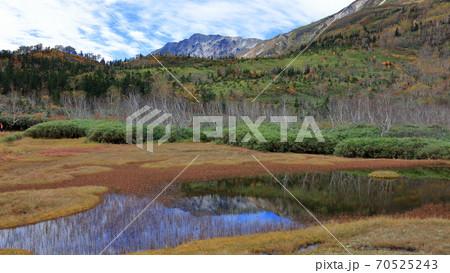 栂池自然園黄葉の浮島湿原に白馬岳が水鏡 70525243