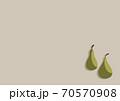 洋梨のイラスト 70570908