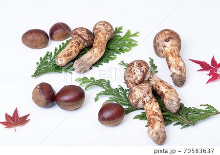 秋の美味しい味覚 松茸・栗・紅葉 など イメージ 70583637