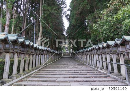 宝山寺の石段と灯篭群、奈良県生駒市 70591140