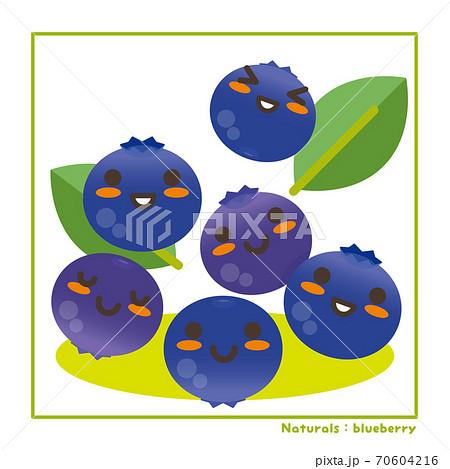 なちゅらるズ ブルーベリー果実で収穫のご案内 70604216