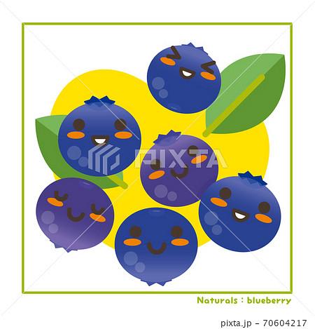 なちゅらるズ ブルーベリー果実で収穫のご案内 70604217