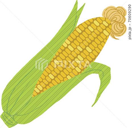 トウモロコシ 70609290