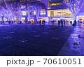 グランモール公園を鮮やかに照らすイルミネーションと夜光虫 70610051