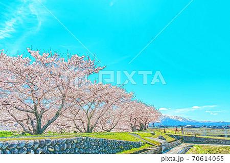 [アニメ風] 日本の春 富山県 舟川堤防からみた田園風景 70614065