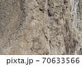 砂岩 70633566