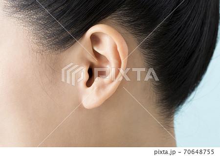 女性の耳 70648755