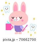 歯磨きをするウサギイラスト 70662700