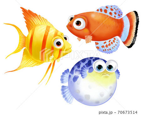 熱帯魚 70673514