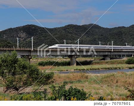 秋の山陽新幹線千種川橋梁 ススキの河原 70707601